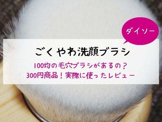 ダイソー・洗顔ブラシ・毛穴ブラシ・100均・ごくやわ