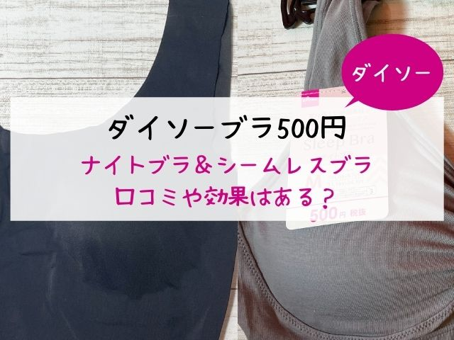 100均・ダイソー・ナイトブラ・シームレスブラ・500円・効果・口コミ