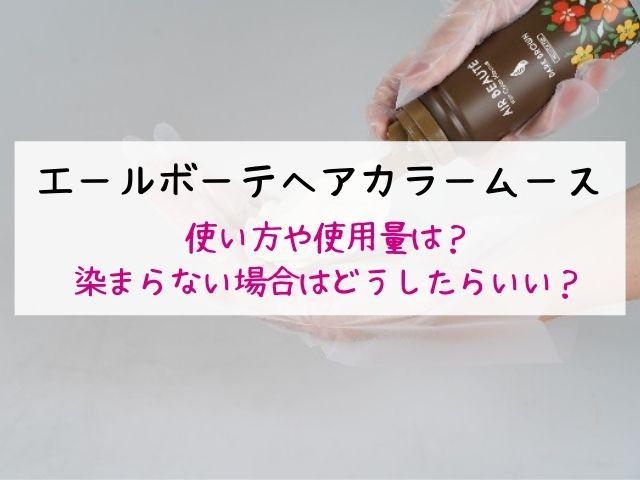 エールボーテヘアカラームース、使い方、使用量、染まらない